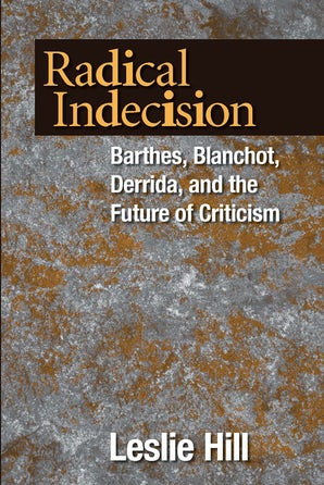 Radical Indecision book image