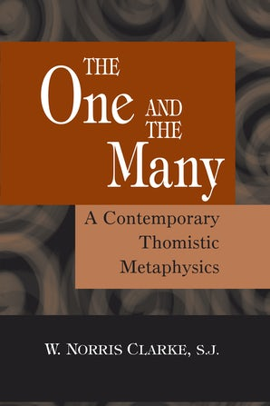 The One and the Many book image