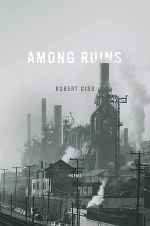 Among Ruins book image