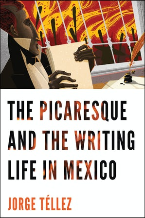 The Picaresque and the Writing Life in Mexico book image